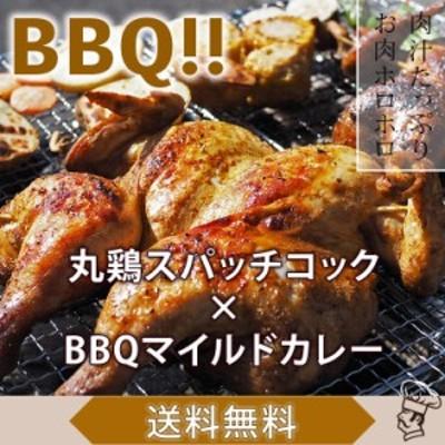 【 送料無料 】 バーベキュー BBQ 鶏の丸焼き 丸鶏 1羽 ボリューム カレー グリル 生 惣菜 肉 チルド アウトドア パーティー