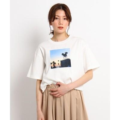 tシャツ Tシャツ 【XS〜L】オレンジカウンティTシャツ