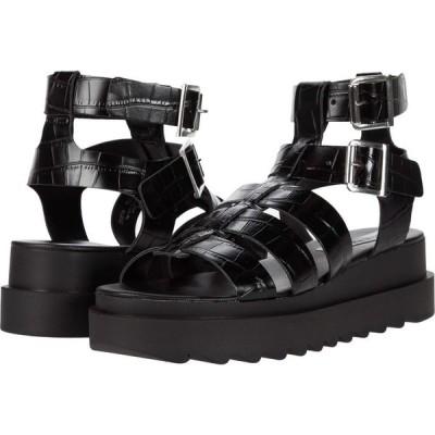 スティーブ マデン Steve Madden レディース サンダル・ミュール グラディエーターサンダル シューズ・靴 Zeeta Gladiator Sandal Black Croco