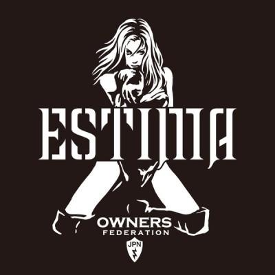 カッティングステッカー トヨタ(TOYOTA)エスティマ ESTIMA bondage 車 カー ステッカー アクセサリー シール ガラス[◆]