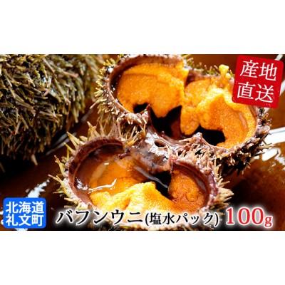 【2021年度発送分】北海道礼文島産 採れたてバフンウニ(塩水パック)100g×1