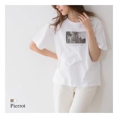 Pierrot フォトプリントコットンTシャツ Tシャツ カットソー プリントT フォトT 綿100% 半袖 ベージュ L レディース