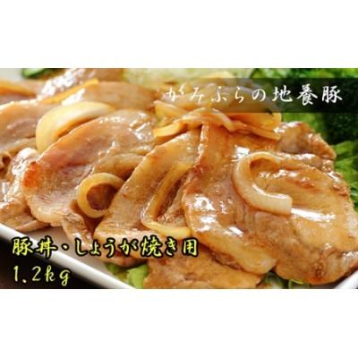 かみふらのポーク【地養豚】豚丼・生姜焼き用ロース1.2kg