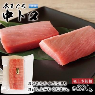 本マグロ 中トロ 刺身 サク 約230g 生食用 2〜3人前 クロマグロ 極上品 冷凍