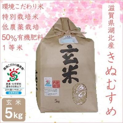 低農薬 きぬむすめ 5kg 令和2年産 玄米 50%有機肥料 特別栽培米 1等米 滋賀県環境こだわり米 【滋賀県WEB物産展】