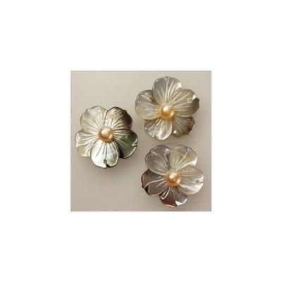 シェルパーツ  黒蝶貝彫刻桜トップ 22mm