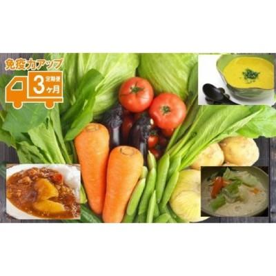 免疫力アップの3か月 030077. たっぷり野菜でアレンジメニュー定期便