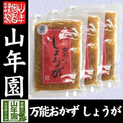 惣菜 おかず生姜 国産 万能おかず生姜 130g×3袋セット 送料無料
