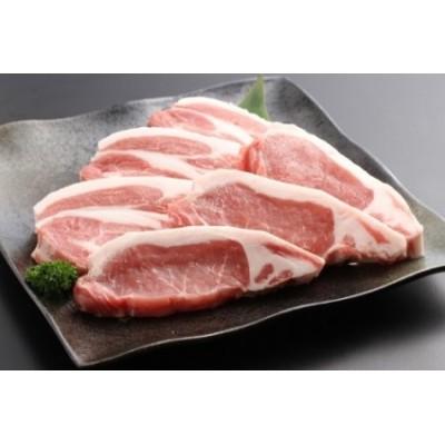 AB371SM-C  金猪豚(いのぶた)ロース 生姜焼き用 500g