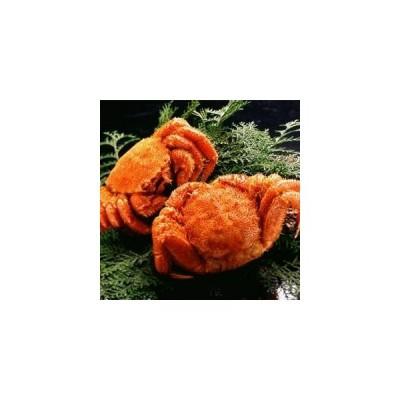 食品 魚介類 毛ガニ 【北海道産】 ボイル毛ガニ姿(約350g×2尾) 通販 ts144