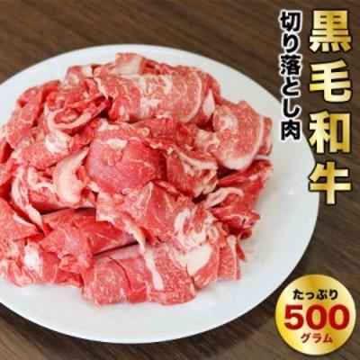 経産牛 600g 送料無料 牛肉 ヘルシーな黒毛和牛の切り落とし 家庭用 おもてなし用 簡単調理 使い切り ちょっと贅沢なお肉 赤身肉が好きな