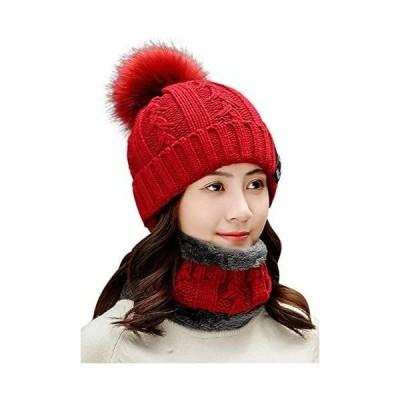 [ネコート] ネックウォーマー ニットキャップ 7カラー 帽子 キャップ セット スキー スノボ 冬 フリーサイズ(レッド Free Size)