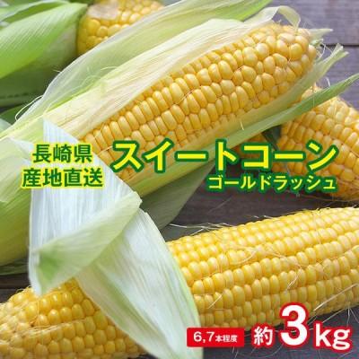 送料無料 とうころこし スイートコーン ゴールドラッシュ 長崎県産 長崎 トウキビ とうもろこし コーン 約 3kg 6〜9本 サイズ混合 産地直送 野菜