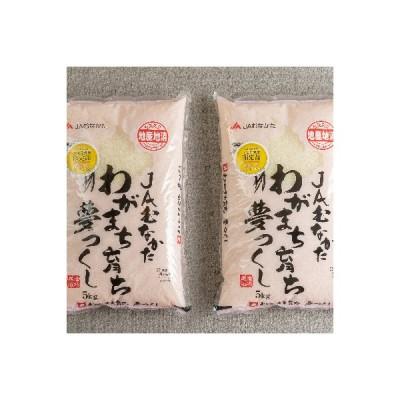 朝倉市 ふるさと納税 【朝倉】果物屋さんの夢つくし(米)5kg×2袋