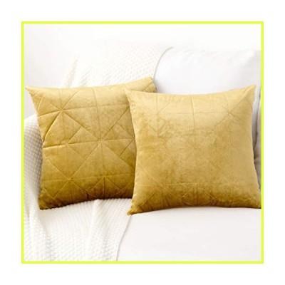 PANDATEX 無地ベルベットスローピローカバー 2枚セット ソファ カウチ 椅子 寝室 リビングルーム ホームデコレー
