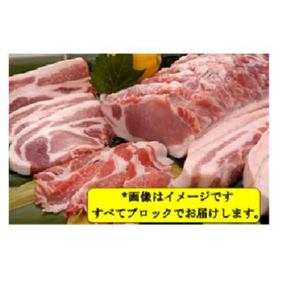 鹿児島県産豚1頭ブロックセット(6箱一括送付)