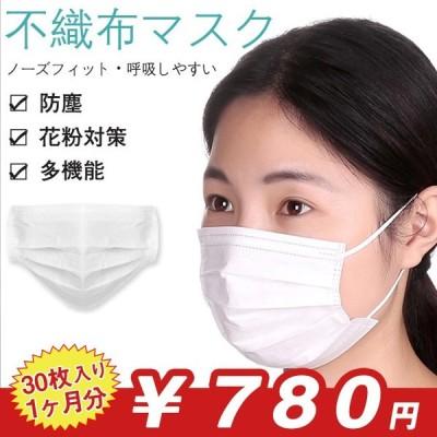 マスク 不織布 ホワイト 30枚入 限定在庫処分 三層構造 花粉症対策 フェイスマスク ホコリ 対策 使いきり 使い捨て 立体 プリーツタイプ ノーズワイヤー 激安