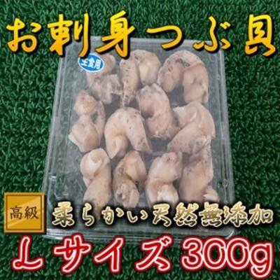 小パック 生食用 天然 無添加 ボイル ツブ貝 Lサイズ (300g) のし対応 お歳暮 お中元 ギフト BBQ 魚介