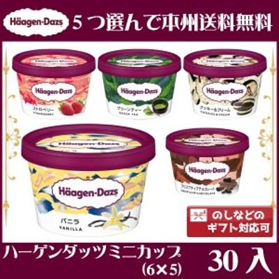 (5つ選んで、本州一部冷凍送料無料)ハーゲンダッツ ミニカップ (6×5)30入(冷凍)