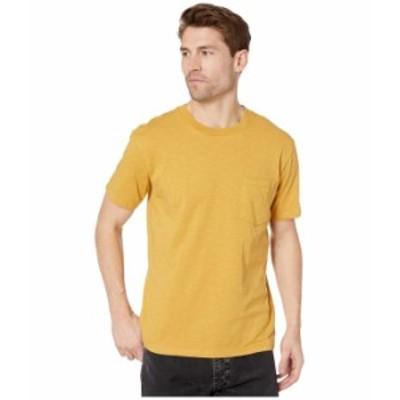 ビラボン メンズ シャツ トップス Mesa Slub Premium Crew T-Shirt Gold