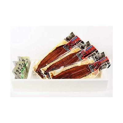 愛知県 一色産うなぎ 一色うなぎ 漁業協同組合 蒲焼 約130g×3尾 送料無料 西尾市 三河 鰻