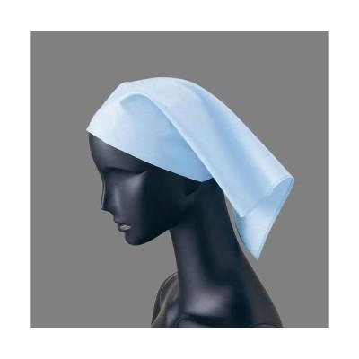 サンペックスイスト 三角巾51(サックス)2枚入 SSV0102