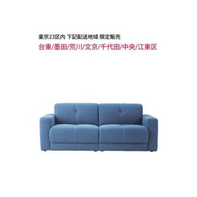 東京23区内限定販売 (台東/墨田/荒川/文京/千代田/中央/江東区のお届先) 東谷 (AZUMAYA) Capital sofa キャピタル SS-115DM