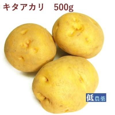 じゃがいも ジャガイモ   キタアカリ 500g 低農薬栽培  送料別 ポイント消化 食品
