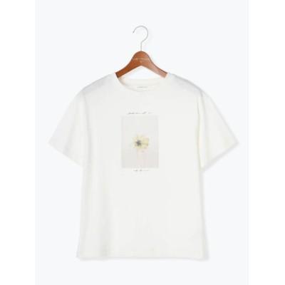 【テチチ/Te chichi】 フラワーフォトTシャツ