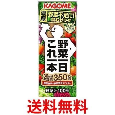 カゴメ 野菜1日これ1本 200ml紙パック×24本 2ケース