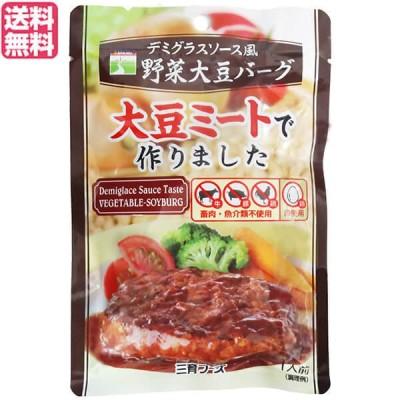 大豆たんぱく 大豆ミート ソイミート 三育フーズ デミグラスソース風野菜大豆バーグ 100g 送料無料