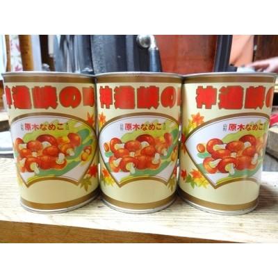 大江町柳川産 原木なめこ水煮200g×3缶(固形量)