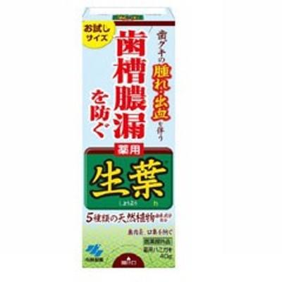小林製薬 KOBAYASHI PHARMACEUTICAL 生葉 お試しサイズ 40g 日用品・生活雑貨