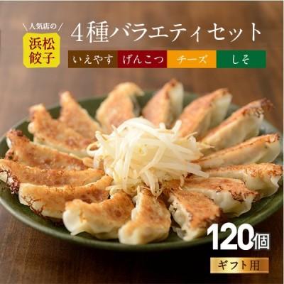 【行列店の浜松餃子】いえやす餃子4種を一度に楽しめる4種バラエティーセット【120個】贈答用 浜松ぎょうざ