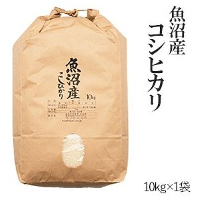 魚沼産コシヒカリ10kg 令和2年産 送料無料(一部地域のぞく)