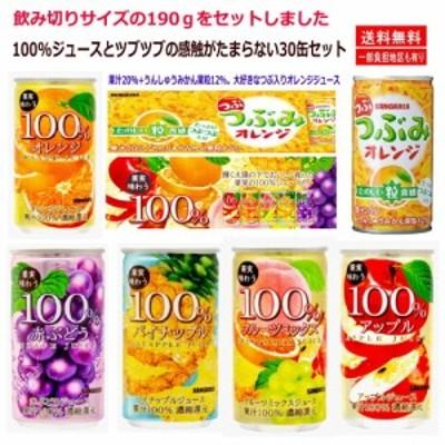 新着 サンガリア100% ジュース ミックス つぶみオレンジ アソート30缶セット 関東圏送料無料