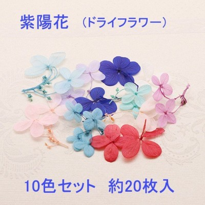 半額セール♪紫陽花 10色セット 約20枚入り【2019/7/10入荷】