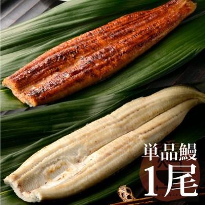 うなぎ 鰻 蒲焼 白焼き 特大 国産 1尾単品