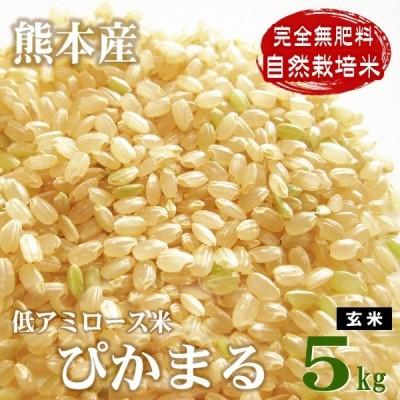 低アミロース米 ぴかまる 5kg 令和2年産 完全無肥料 自然栽培米 農薬化学肥料不使用 自社農園産 熊本県産 白米 玄米 放射能検査済み
