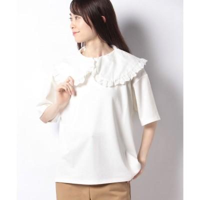 【エヘカソポ】【ehka sopo】衿付Tシャツ