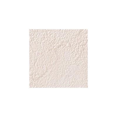 サンゲツ 壁紙 ファイン FE6811 92.5cm 1m長 糊なし