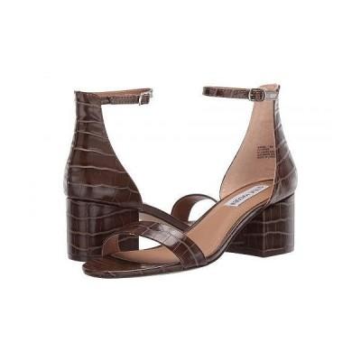 Steve Madden スティーブマデン レディース 女性用 シューズ 靴 ヒール Irenee Sandal - Brown Croco