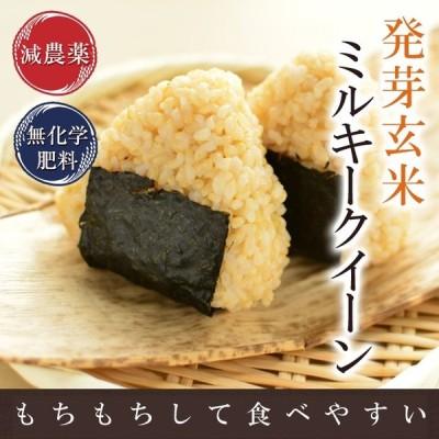 発芽玄米 減農薬 ミルキークイーン 福井県2年産 新米 2Kg