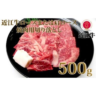 025H19 中川牧場の近江牛ロースまたは肩ロース焼肉用 500g[高島屋選定品]