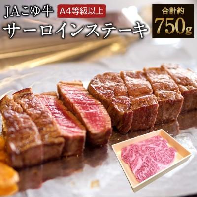 【数量限定】宮崎黒毛和牛<JAこゆ牛>サーロインステーキ(250g×3枚)※90日以内出荷