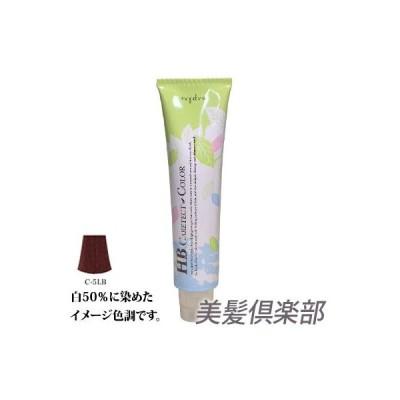 ナプラ HB ケアテクトカラー C-5LB 80g (白髪染め)(医薬部外品)
