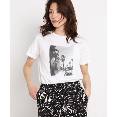 tシャツ Tシャツ 【洗える】リーフエフェクトプリントTシャツ