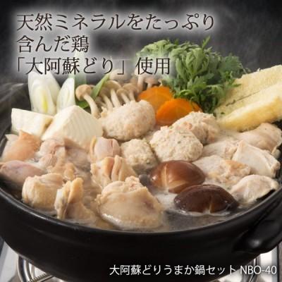 さつま屋産業 大阿蘇どりうまか鍋セット NBO-40 熊本県産大阿蘇どり(もも肉150g、むね肉150g、手羽元200g、つみれ200g、スープ55g×3)