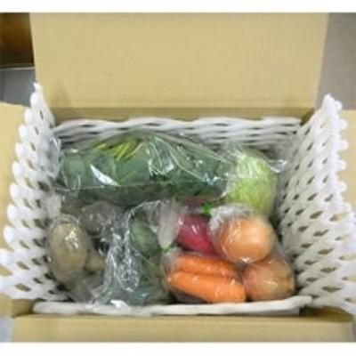 野田村の旬の野菜8種類程度詰合せ
