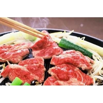 送料無料 特製味付けジンギスカン(500g)厳選生ラム肉 bbq 北海道 のしOK / 贈り物 グルメ ギフト
